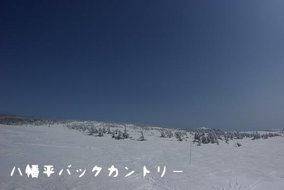 090321_999.jpg
