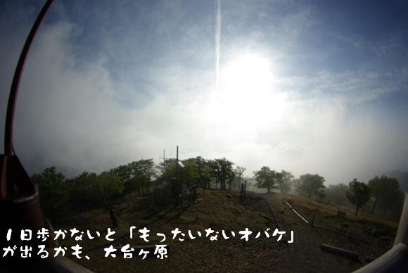 090523_999.jpg