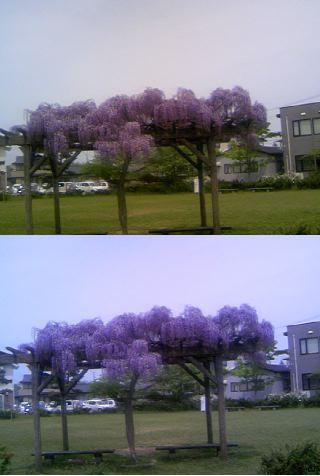 20070523195858.jpg